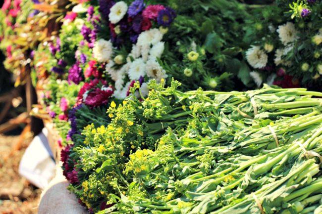 Blumen Markt Kalaw