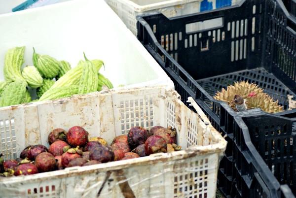 Sogar Durian wird angeboten