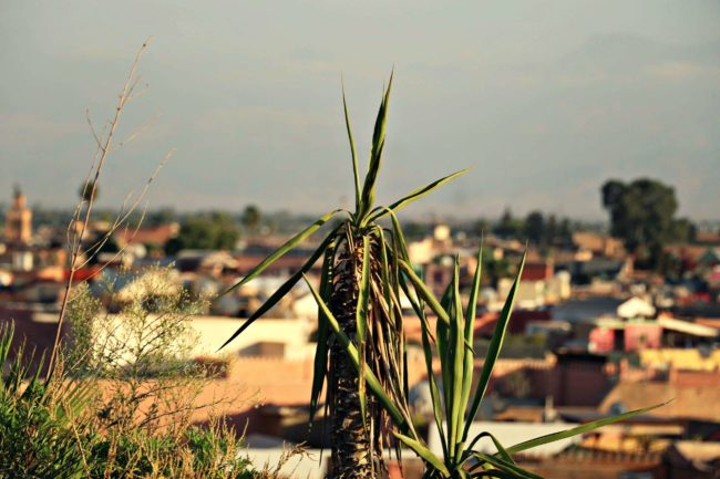 Ausblick Marrakesch