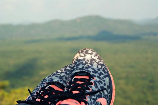 Aussicht Sigiriya