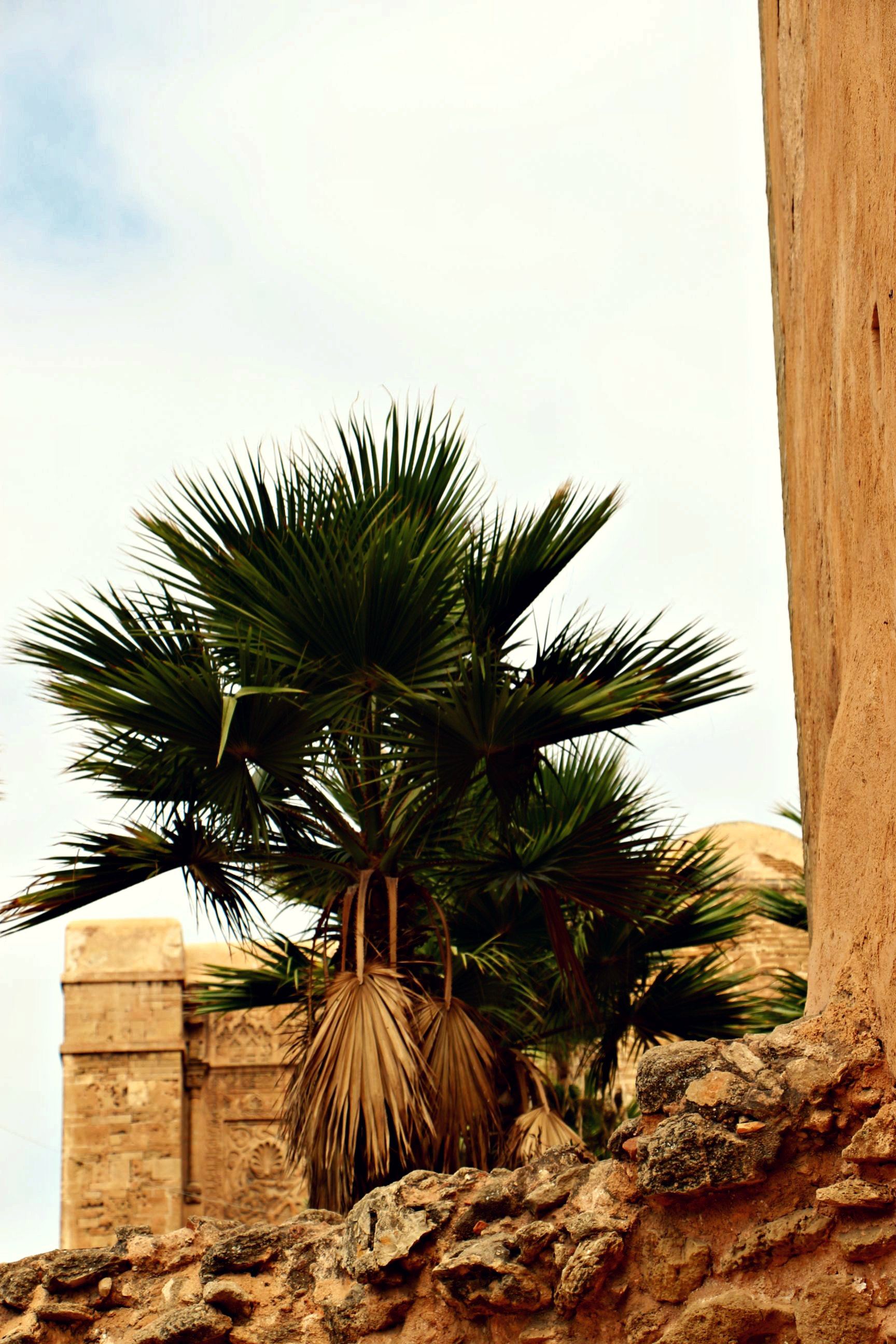 Rabat_076