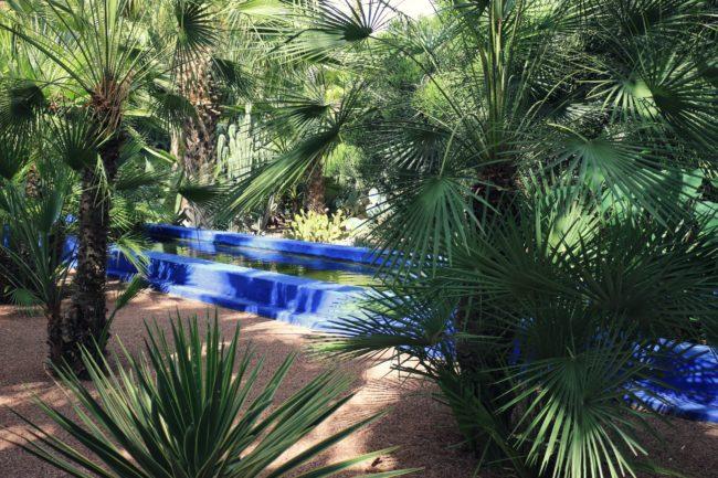 Wasserbecken Jardin Majorelle