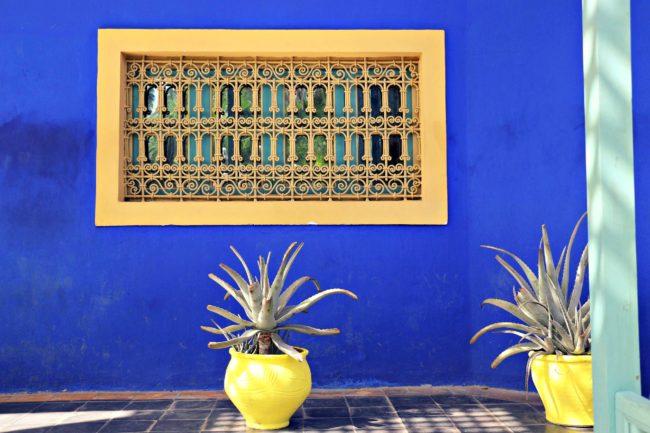 Pflanzenkübel und Fenster Jardin Majorelle