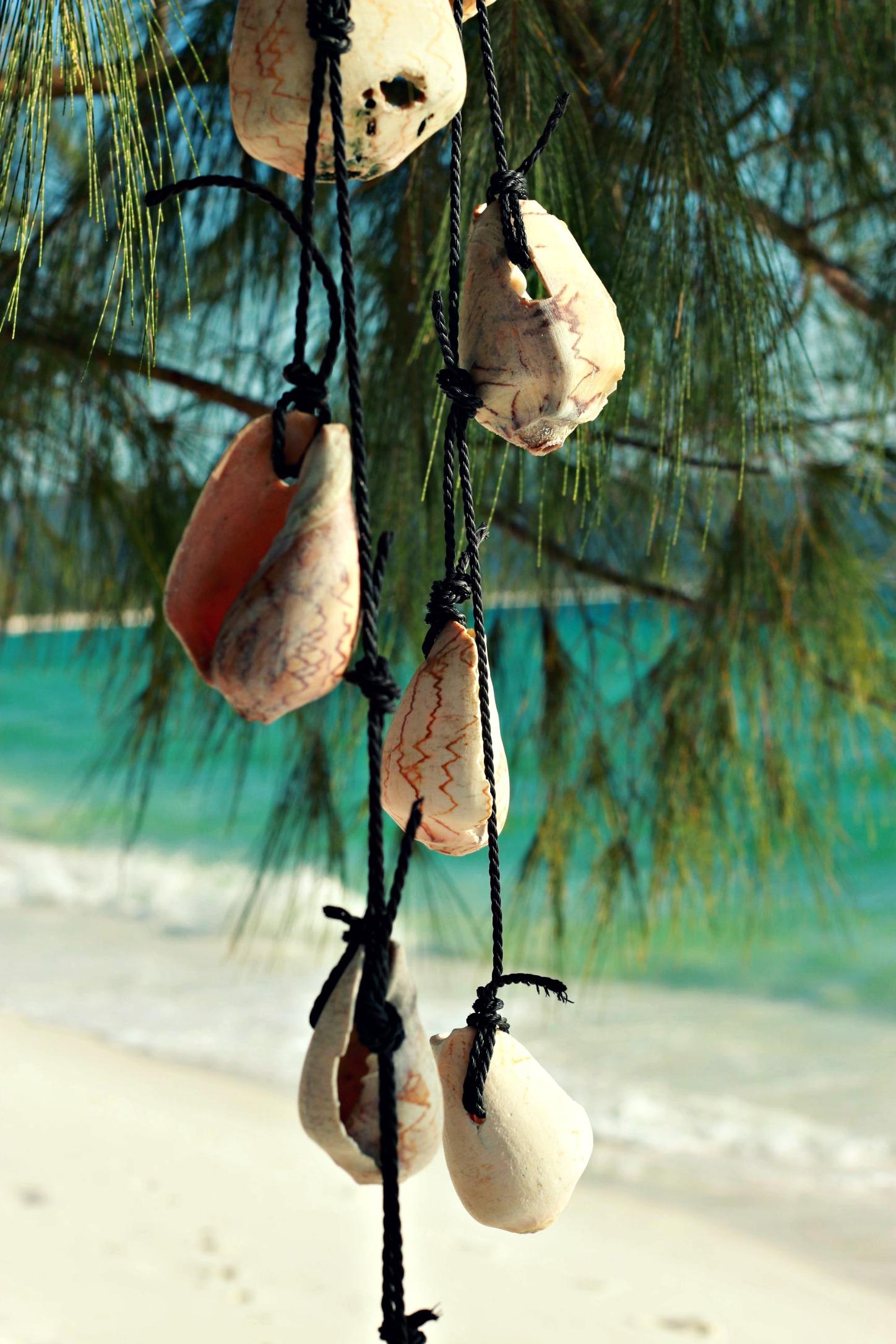 Muschelkette am Strand