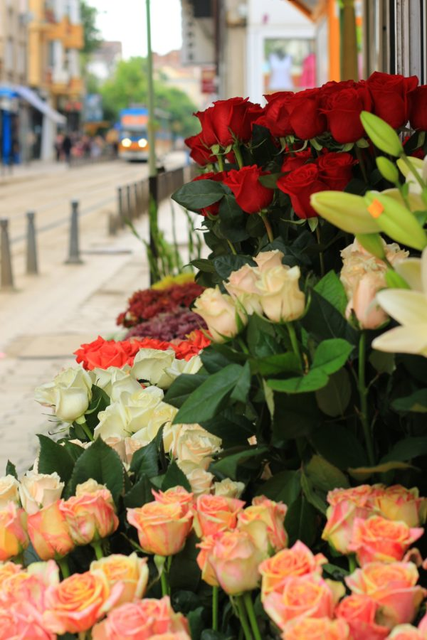 Straße Sofia