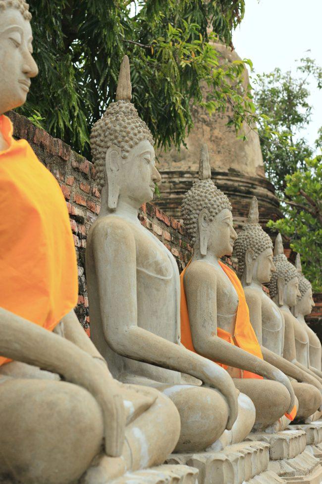 buddha statuen ayutthaya