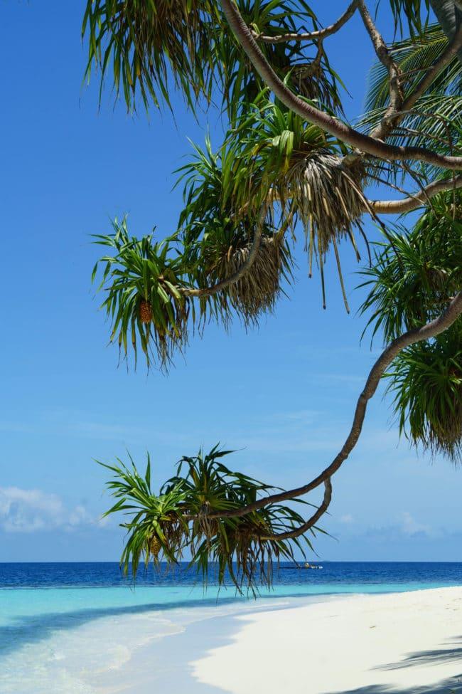 strand angaga island resort malediven