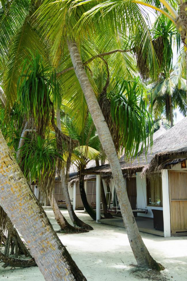 beach villa angaga island