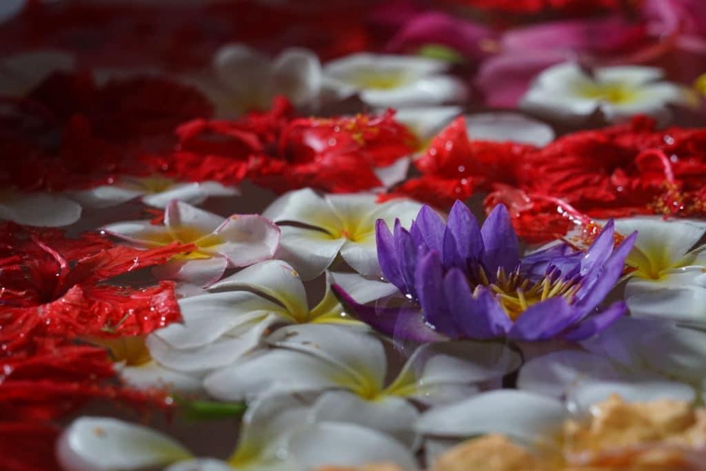 Ein Blumenbad ist Teil der meisten Kuren